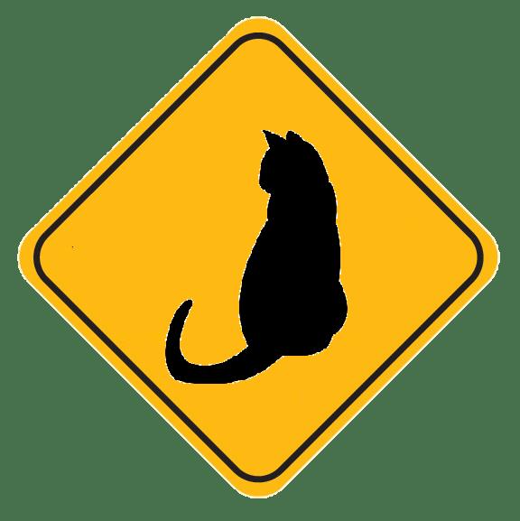 לכידת חתולים