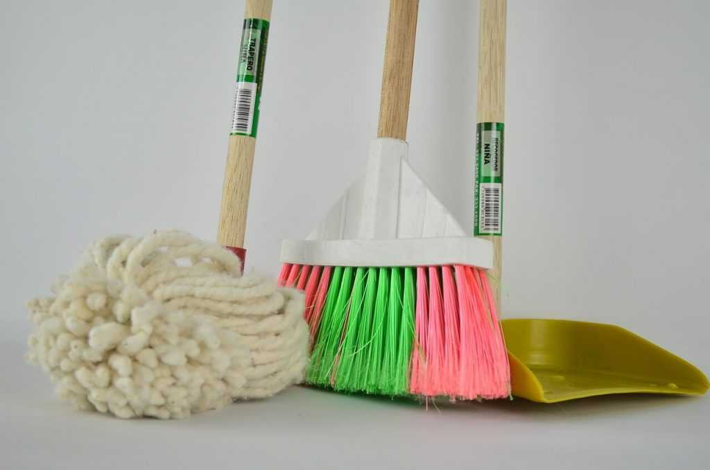 חשיבות הניקיון בבנייני מגורים על מנת להישמר ממזיקים